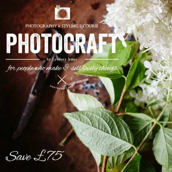 Save £75 off Photocraft 100 Lesson Photography & Styling E-course