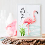Who doesn't love flamingos?!