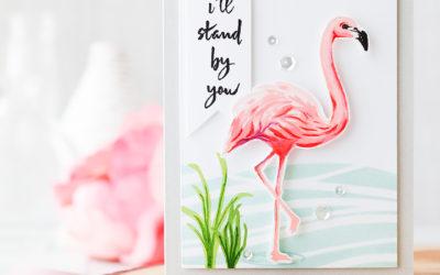 Who doesn't love flamingos?!