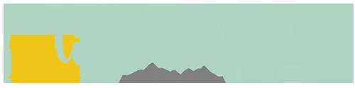 Lime Doodle Design logo