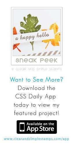 css app sneak peek!