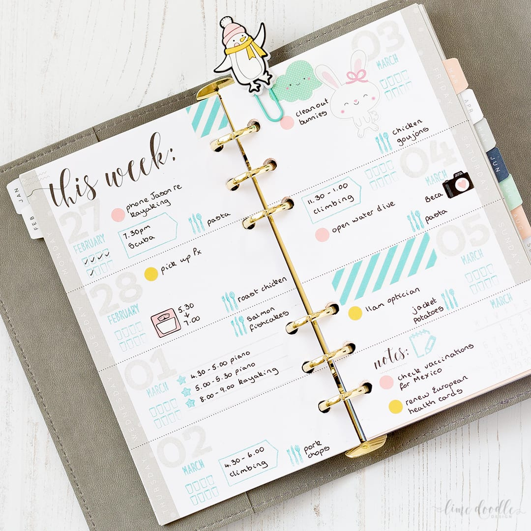 How I plan my week in a Kaisercraft planner by Debby Hughes. Find out more by clicking on the following link: https://limedoodledesign.com/2017/03/video-how-i-plan-out-my-week/
