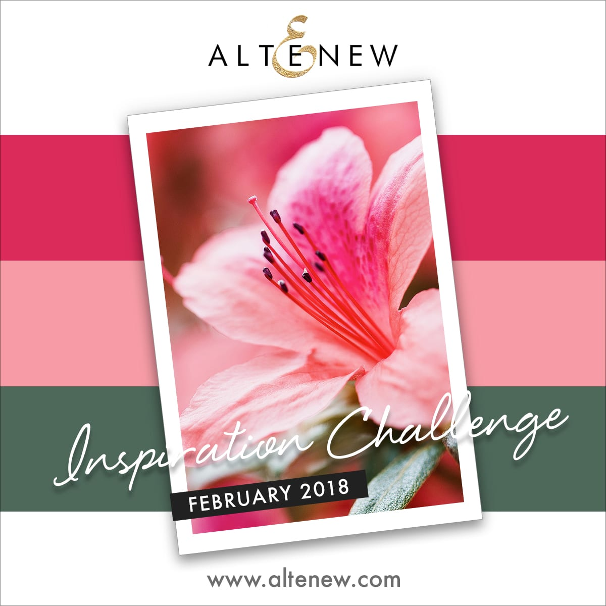 Altenew February Inspiration Challenge with photo and inspiration by Debby Hughes. Find out more here: http://wp.me/p6Dps1-5Ec