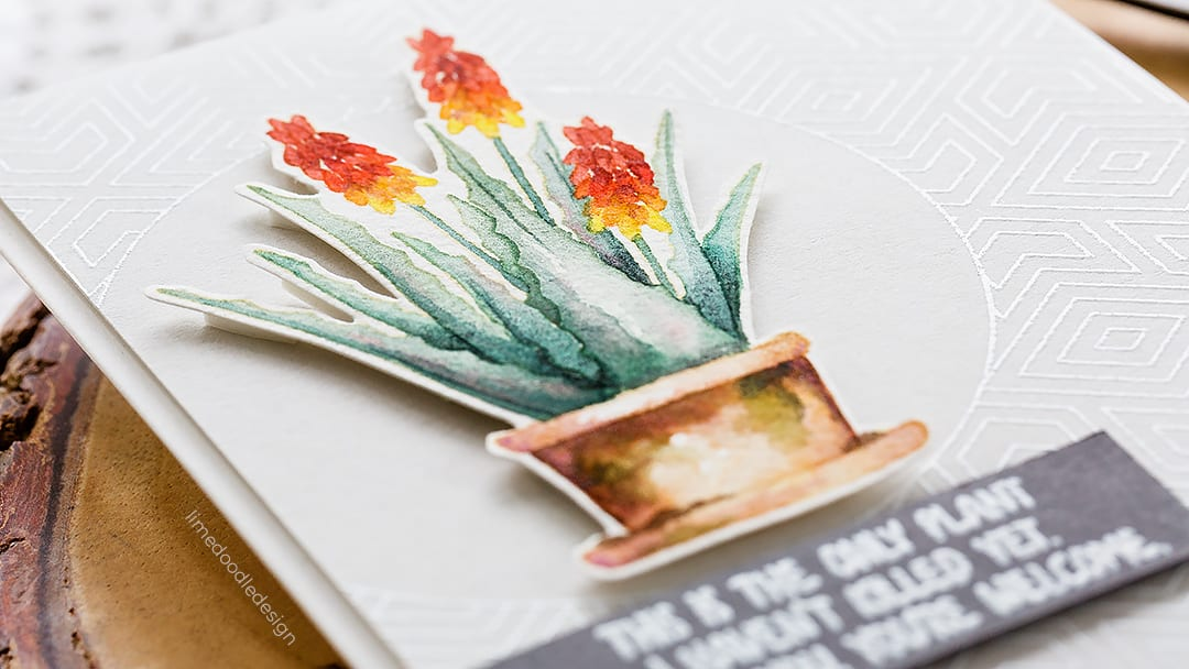 Video tutorial - Aloe Vera watercoloured handmade card by Debby Hughes using supplies from Simon Says Stamp. Find out more here: https://limedoodledesign.com/2018/08/video-simple-no-line-watercolouring/