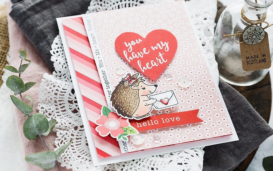 Video – Sweet Hedgehog Valentine