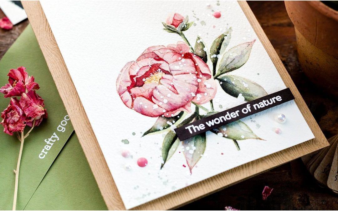 Video – Watercoloured Peony Handmade Card + New Release